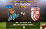 CCL 1st Semi Final Toss Report: Bengal Tigers won the toss & elected to